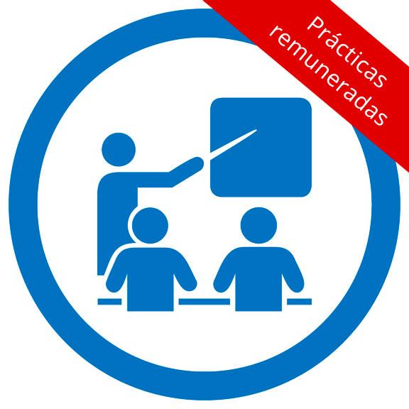 <h5>Consultoría y Auditoría de Sistemas Integrados con prácticas remuneradas en empresas</h5><br/>